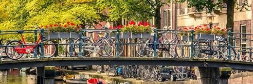 海牙如何用移动应用解决自行车停车问题